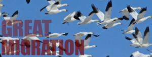 The 3 Biggest hurdles in Enterprise data Migration